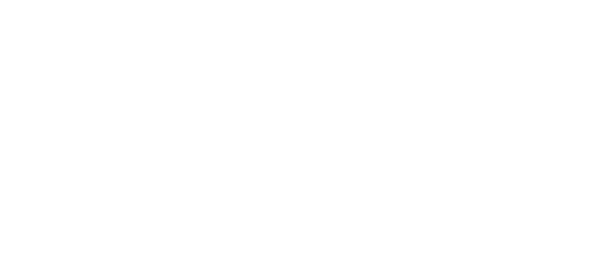 nail specialist pro logo